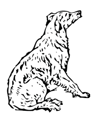 Dog Breed Coloring Pages To Print Free Breeds Full Size