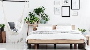 pflanzen im schlafzimmer darauf kommt es laut experten an