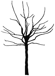 Black And White Bare Tree Clipart Coloring Page