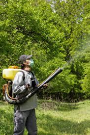Background Of Roundup Monsantos Popular Weed Killer