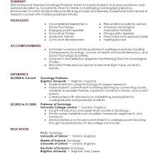 Sample Resume Of College Lecturer Feat
