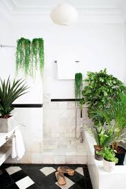 Best Plant For Dark Bathroom by 25 Best Green Bathrooms Designs Ideas On Pinterest Green