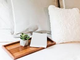 diese pflanzen eignen sich besonders gut für das schlafzimmer