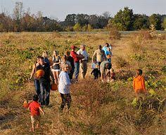 Pumpkin Patch Collins Ms by Lazy U Farm Macon Mississippi Pumpkin Patch Pick Your Own