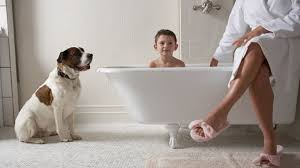 das perfekte badezimmer für die ganze familie