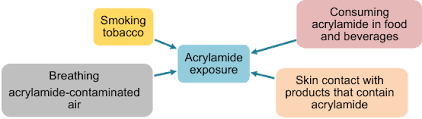 Consuming Acrylamide In Food And Beverages 2 Skin Contact With Products That Contain