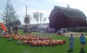 Northeast Iowa Pumpkin Patches by Schuster U0027s Pumpkin Patch U0026 Corn Maze Provided By Bravenet Com