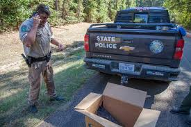 100 Game Warden Truck Bald Eagle With Possible Gunshot Wound Found At Wright Patman