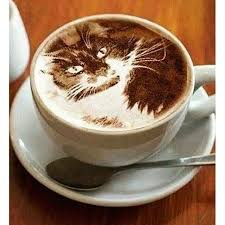 Amazing Art Cappuccino Cat Cool Ladyboom