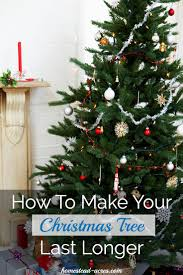 Krinner Christmas Tree Genie Xxl Canada by How To Make Your Christmas Tree Last Longer Homestead Acres