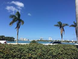 Publix Christmas Trees Miami by Chic Bohemian Apartment At The Merc Miami Beach Fl Booking Com