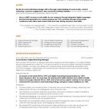 Sales Executive Resume Sample Pdf Beautiful Email Marketing Tierianhenry