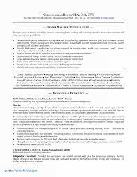 Mickeles Elegant Strategic Management Report Template Unique It