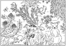 Coloring Pages Printable Nature Life Animal Pictures To Colour Stunning Deep Rain Forest Landscape Scenery