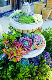50 Ways Of Creating An Enchanted Succulent Garden In Your Backyard ... Modern Garden Plants Uk Archives Modern Garden 51 Front Yard And Backyard Landscaping Ideas Designs Best 25 Vegetable Gardens Ideas On Pinterest Vegetable Stunning Way To Add Tropical Colors Your Outdoor Landscaping Raised Beds In Phoenix Arizona Youtube Kids Gardening Tips Projects At Home Side Yard 55 Youll Fall Love With 40 Small 821 Best Images Plants My Backyard Outdoor Fniture Design How Grow A Lot Of Food 9 Ez Tips
