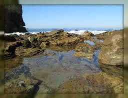 100 Portabello Estate Corona Del Mar Cameo Shores Del CA Ket Update Newport Beach CA