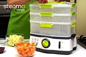 steamer cuisine 10 best electric food steamer reviews to eat healthy today