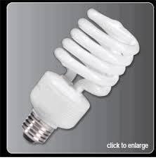 photography light bulbs tungsten 3200k daylight 5000k