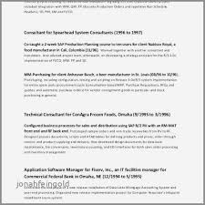 Resume Objective For Management Inspirational Bank Account Manager Examples Unique Best Cio