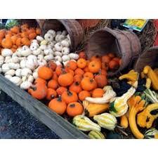 Pumpkin Patch Sf Yelp by Pumpkin Patch Farm Stand Fruits U0026 Veggies 142 Long Island Ave