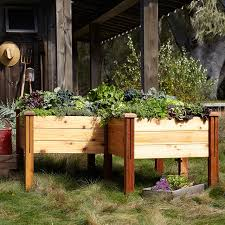 Gronomics Raised Garden Bed by Gronomics Stained Elevated Bed Williams Sonoma
