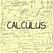 Calculus For Business And Social Science