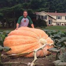 Atlantic Giant Pumpkin Taste by Halloween Airblown Inflatable 10 Ft Giant Pumpkin Products