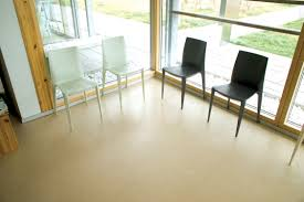 Flooring Materials For Office by Office Flooring Tui Chooses Vinyl For Their Office Flooring T