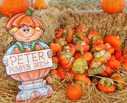 Pumpkin Patch Sf by Spring Hill Jersey Cheese