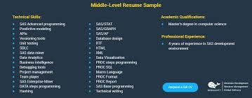 Middle Sas Developer Resume Sample
