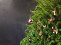 Christmas Tree Preservative Recipe by Zero Waste Christmas Trees Whole Foods Market