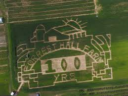 Pumpkin Farms In Waldorf Maryland by Forrest Hall Farm Home Of The Crazy Corn Maze