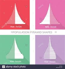 Christmas Tree Types by Population And Demography Illustration Of Different Types Of