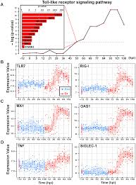 Asymptomatic Viral Shedding Influenza by Temporal Dynamics Of Host Molecular Responses Differentiate