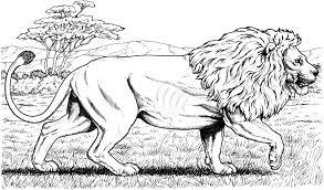 Lion Coloring Pages Cute Kids