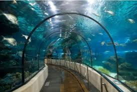 tunel dans lequel on passe tout simplement genial picture of