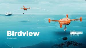 100 Birdview AS LinkedIn