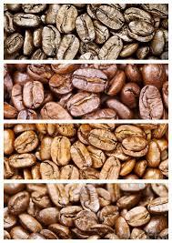 Mocha Coffee Is Lightly Roasted