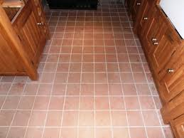 Ceramic Tile Haze Remover by Cleaning And Removing Grout Haze From A Quarry Tiled Floor In