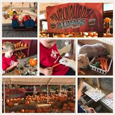 Irvine Railroad Pumpkin Patch by Plan A Day Out Blog Author Archivesmaruska Author At Plan A Day