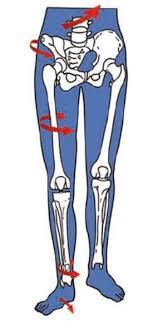douleur interieur genou course a pied douleurs aux genoux tedop