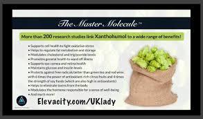 Jules Hughes On Twitter Xanthomax Key Ingredient Xanthohumol MasterMolecule Research Benefit Cellhealth Oxidativestress Regulate Fatmetabolism