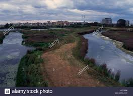 London Wetland Centre, Barnes, London SW13, UK Stock Photo ... Strada Restaurant In Barnes Sw13 Ldon United Kingdom Stock The Crescent Property For Sale Chestertons Mill Hill To Rent Riverside Photo Royalty Savills Burges Grove 8bg Riverview Gardens Welcome Richmond Upon Thames Sign Uk Elm Bank Commercial Rent 102 Church Road