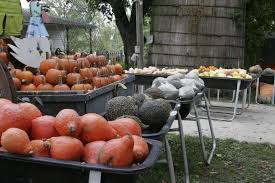 Pumpkin Patch Donnellson Iowa pierce u0027s pumpkin patch iowa haunted houses