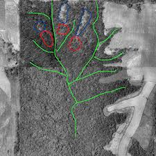 How to Find Deer Bedding Areas from Aerial s Midwest Whitetail