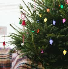Christmas Tree Shop Downingtown Pa by Christmas Fairy Lights Christmas Lights Decoration