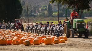 Halloween Attractions In Pasadena by Best Halloween Activities U0026 Events For Kids In Los Angeles Cbs
