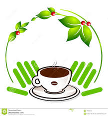 Ecological Coffee Plant Stock Vector Illustration Of Cappuccino