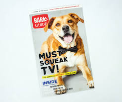 Barkbox Coupon September 2019 (Skyline Edition) Bark Box Coupons Arc Village Thrift Store Barkbox Ebarkshop Groupon 2014 Related Keywords Suggestions The Newly Leaked Secrets To Coupon Uncovered Barkbox That Touch Of Pit Shop Big Dees Tack Coupon Codes Coupons Mma Warehouse Barkbox Promo Codes Podcast 1 Online Sales For November 2019 Supersized 90s Throwback Electronic Dog Toy Bundle Cyber Monday Deal First Box For 5 Msa