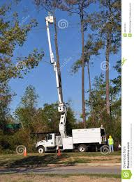 Tree Trimming Bucket Truck Clipart - Clipground Photos Shechtman Tree Care C Lazy T Movers Bucket Truck Services Tamarack West Linn Pagodins Removal Service Providing The Best Dead Using A Boom Extension Truck By Phoenix Valley Equipment For Sale A Better Arborist Treetrimming Catches Fire In Mims Undcover Veggie Commercial Success Blog Asplundh Expert Co Taps Our Arbormax Intertional Trucks Bartlett Experts Youtube Gmc Asplundh Tree Truck V 10 Fs 17 Farming Simulator Mod